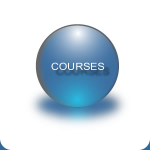 Courses at SJIPS
